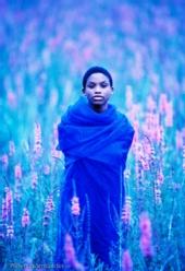 Albert Normandin - Blue Field