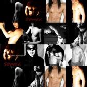 SOMEL - Collage