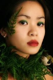 Lilly - Spring