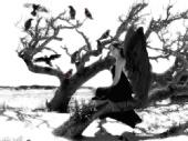 christina pardo - Raven Island