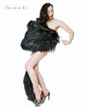 evie lovelle - Feathers