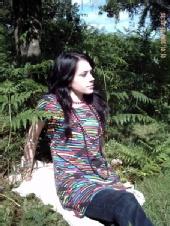 innogen - Forest pictures
