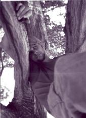 paul ivaldi - tree climbing