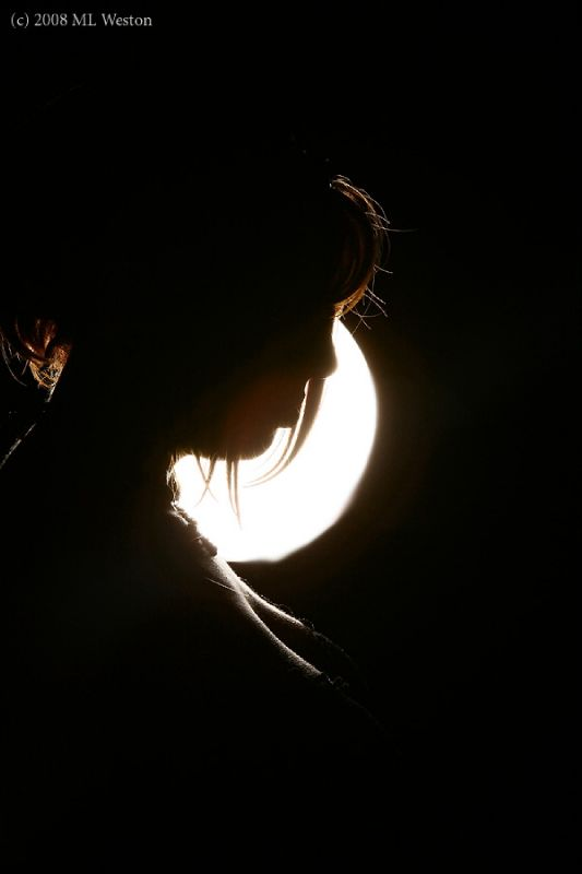 Shannon Kelly - Silhouette by Moonlight
