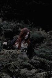 Night Phoenix - Forest Dancer
