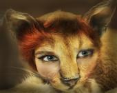 rwspangler - Samacat