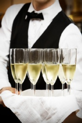 Great Lakes Party Professionals - PARTY / EVENT SERVERS