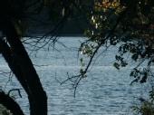 Shane Mahon - Lake