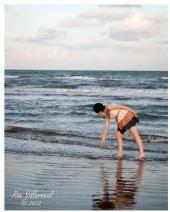 Ron Villarreal - A Sea Shell
